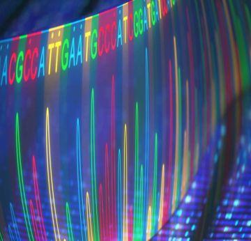 ucam-inicia-estudio-conjunto-sobre-los-caramelos-abedulce Streptococcus-mutans DNA